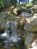 Descanso Gardens Waterfall (2269)