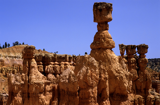 Hoodoos - Bryce Canyon