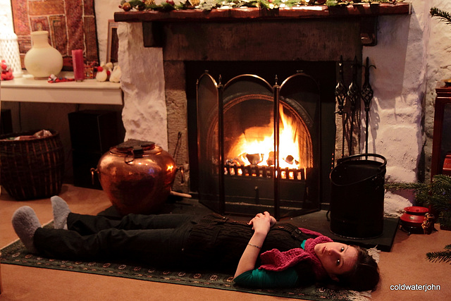 Chilling out in front of Christmas evening fire 5311913160 o