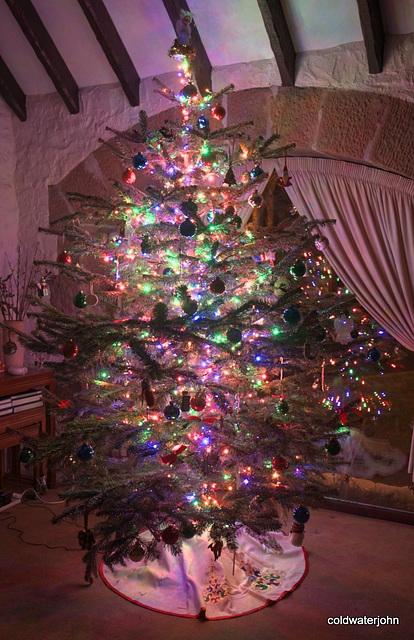 Christmas tree 2010 5311333671 o