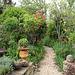 Vers le jardin botanique fou