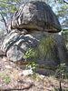 Atherton Tablelands 2004