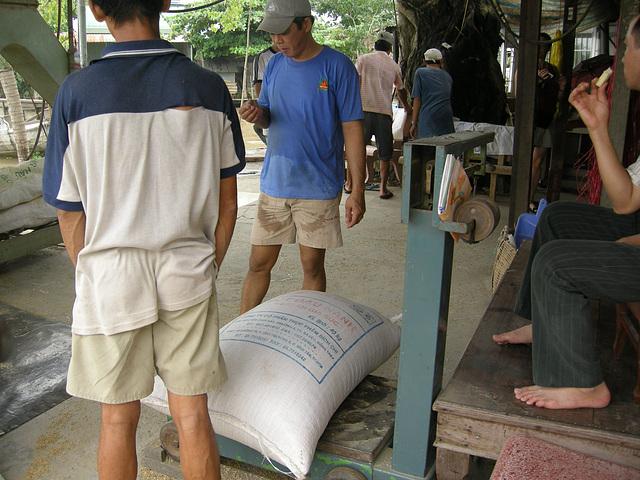 Reis wiegen
