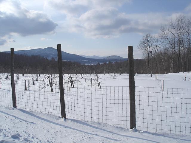 L'hiver dans les Cantons de l'est au Québec
