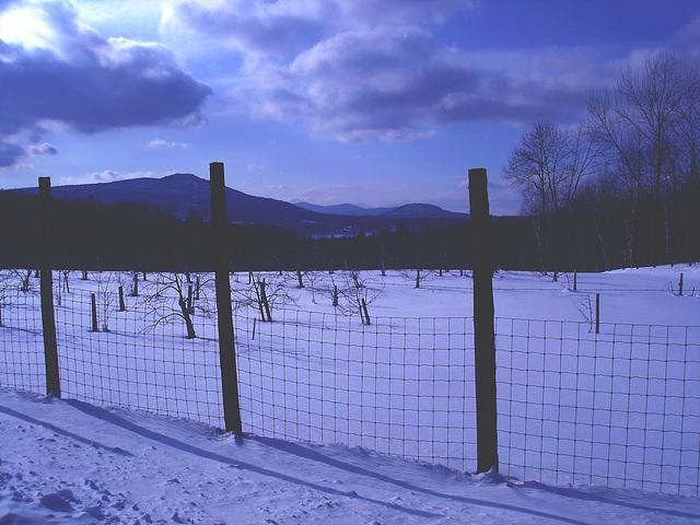L'hiver dans les Cantons de l'est au Québec.   Février 2009 - Effet nuit