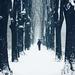 Snow in the Alley. Pirot, Serbia. Pirotski Kej