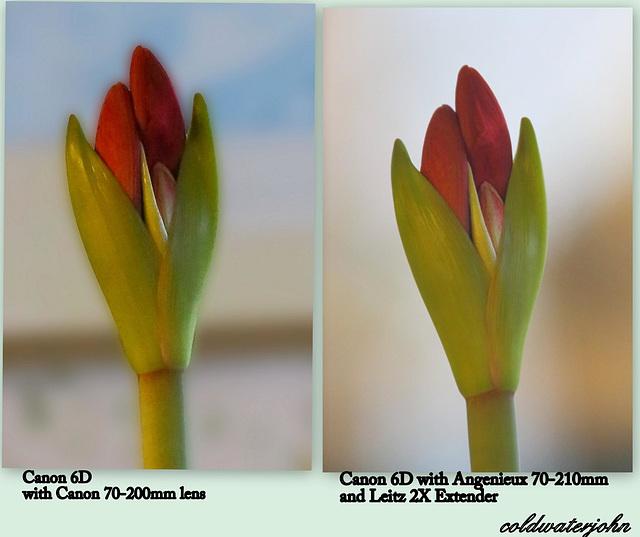 Comparing Canon 70-200mm f2.8 vs. Angeniuex 70-210mm f3.5