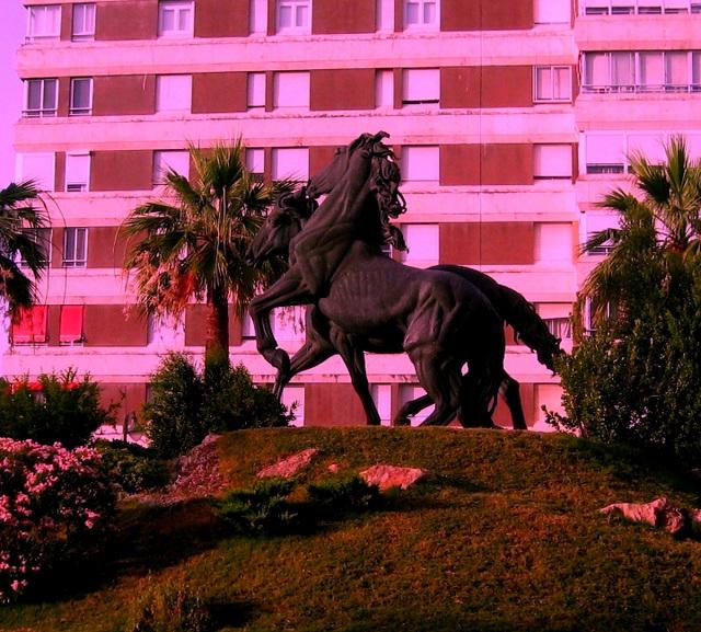 Jerez de la Frontera, Andalusia's horses