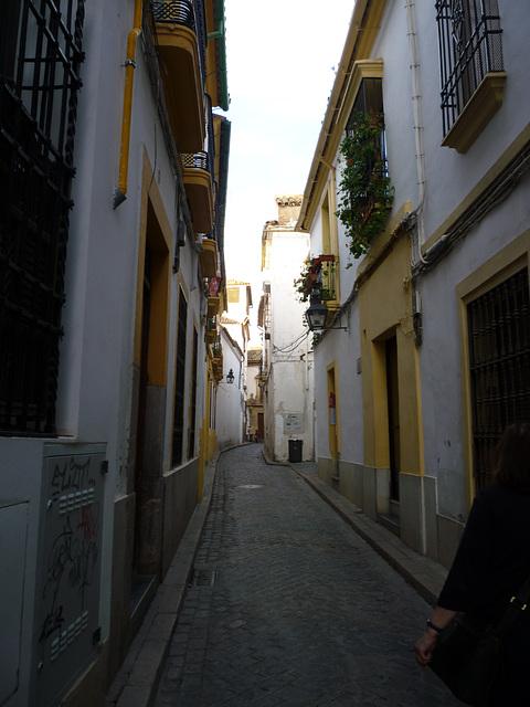 Barrio Judío, Córdoba