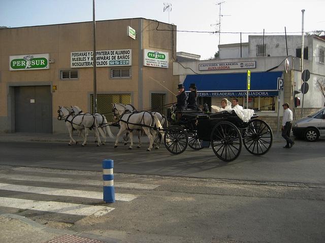 Jerez de la Frontera, Andalusia's wedding, the bride and the groom (1)