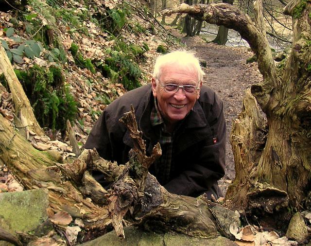 Blick durch die Wurzeln - Polenztal 2008