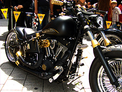 Harley Days 2008