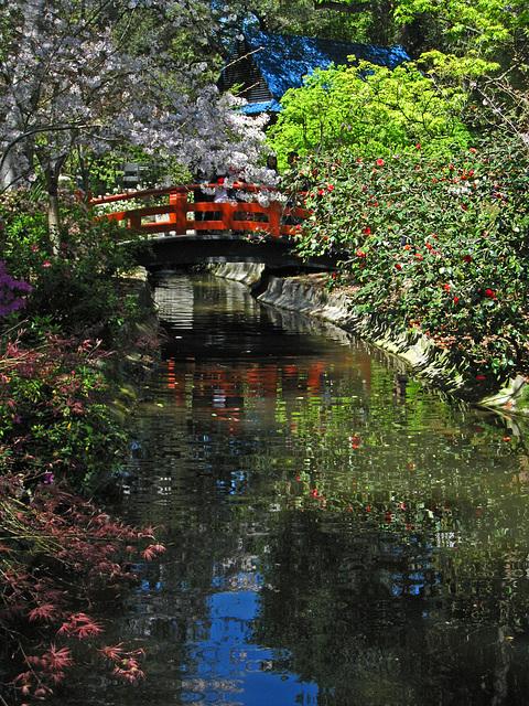 Descanso Garden (2336)