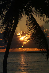 Bahamian Sunrise