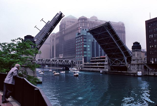 The bridge observer