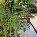 Une vue sur un des bassins