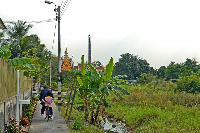 Along a path in Nonthaburi