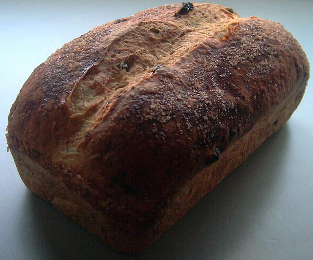 everyday oatmeal honey-raisin bread