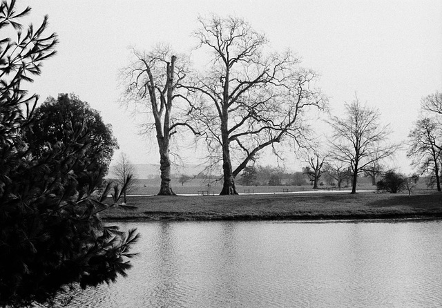 Wintry Lakeside at Croome Park