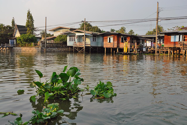 Along the Khlong Bangkok Noi