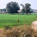 18:1* Dungarpur to Amla Fort BIS - 14