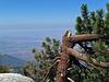 Black Mountain View (0357)