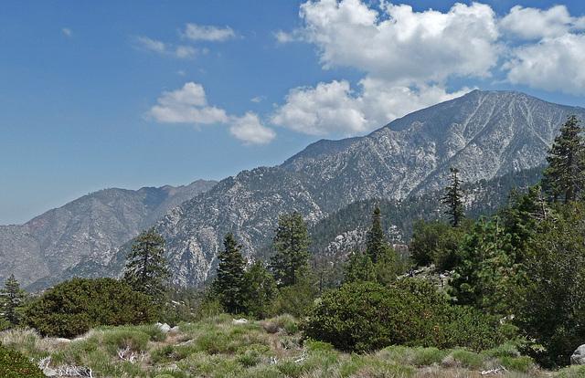 Mt San Jacinto (0392)