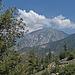 Mt San Jacinto (0394)