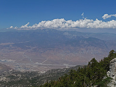 View of Mt. San Gorgonio (0385)