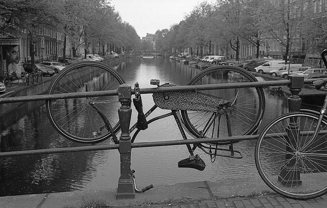 Drunken Bicycle