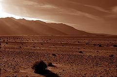 The attack of the strange hedgehog armada on Mars
