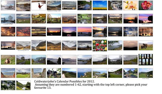 2012 Calendar Possibles