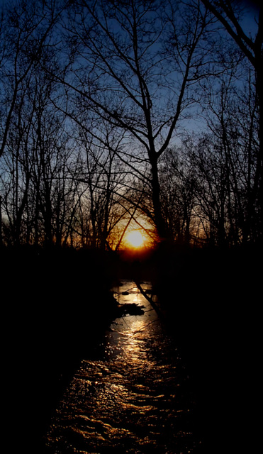 Sunset On The Stream