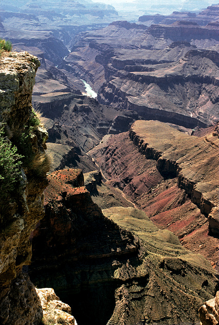 Colors of nature.......