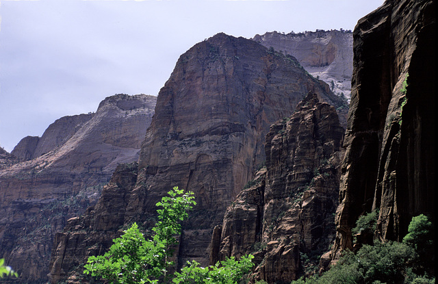 The Zion Mountain Blues - 2