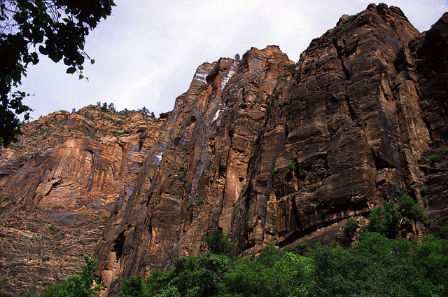 The Zion Mountain Blues - 4