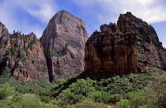 The Zion Mountain Blues - 6