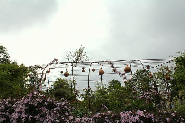 Jardin sous l'orage