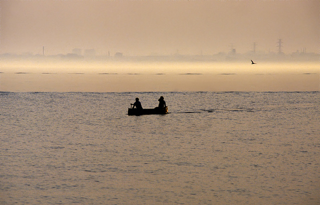 Two in a boat, a bird, a silhouette and yellow evening fog in the sunset.......