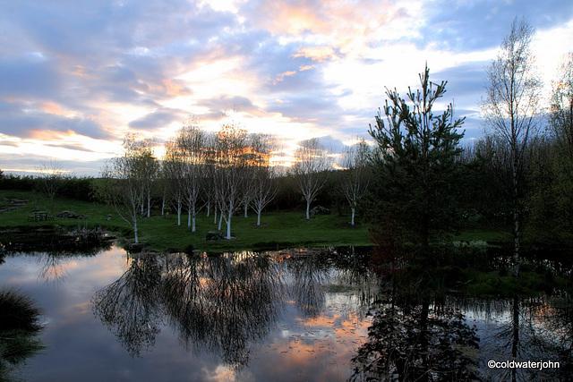 April Evening Skies