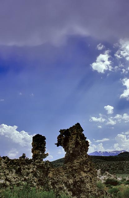 Stone creatures at the Mono Lake