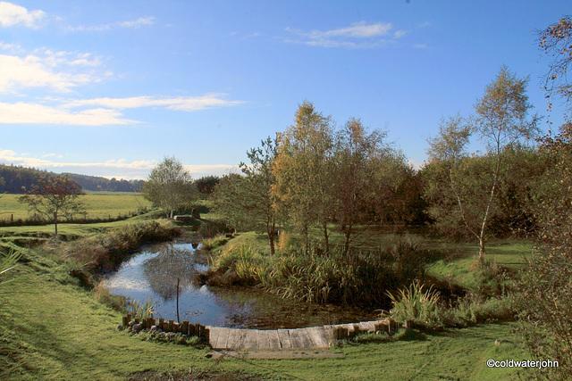 Autmn colours by the pond