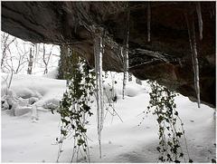 Die Iberghöhle oberhalb von Bad Grund