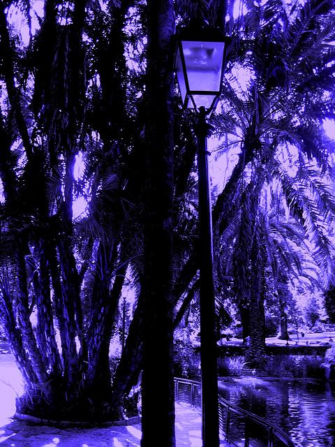 Lisboa, Garden of Estrela, the lamp (4)