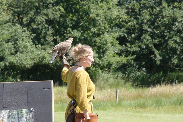 Ribe Vikingcenter - Falconry demonstration