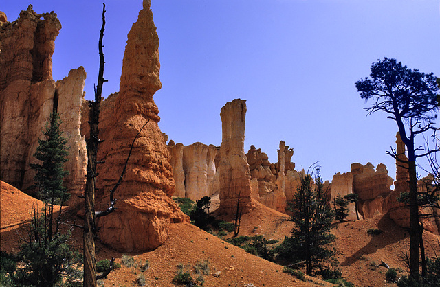 In the awesome Bryce Canyon