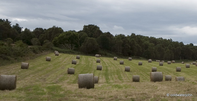 Baling Complete!