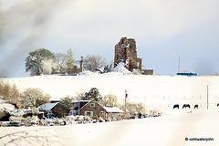 Blervie Castle and Templestones - 3rd April 2012