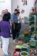 Choosing the fresh victuals for lunch in Qiaotou