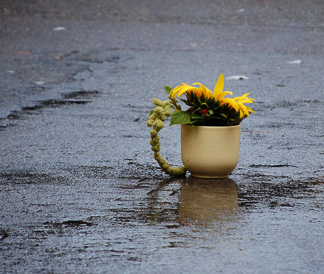 Sonnenblumenfestmelancholie